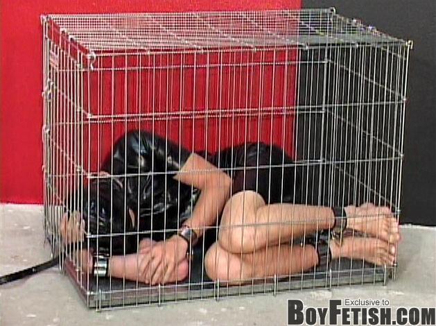 bondage Gay twink caged